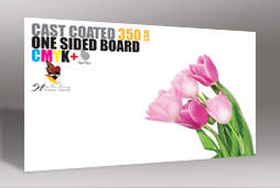 Cast Coated Business Card with matt one side